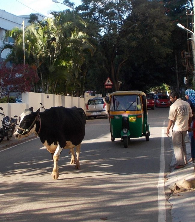 Bangalore Street Scene - photo by Mick